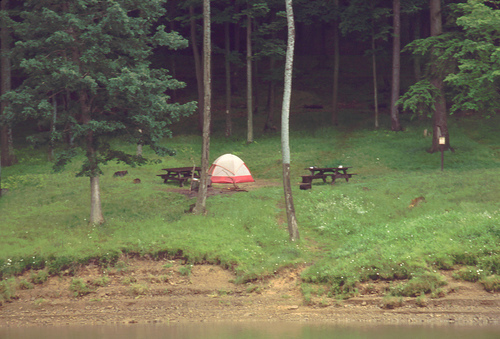 Allegheny National Forest Campground
